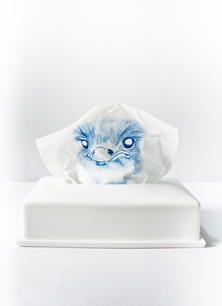 Ostrich in Tissue Box and China