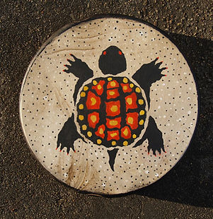 Turtle Drum pic.jpg