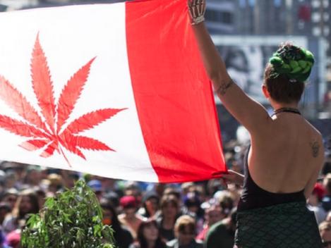 IL CANADA HA APPROVATO LA LEGALIZZAZIONE DELLA CANNBAIS AD USO RICREATIVO