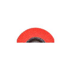 Disco Flap 4a.png