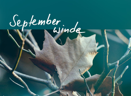 "Neues Lyric-Video ""Septemberwinde"" online"
