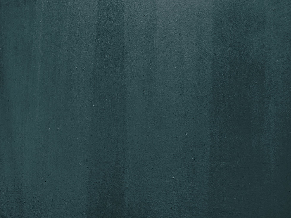Limed Spruce Painted Wall.jpg