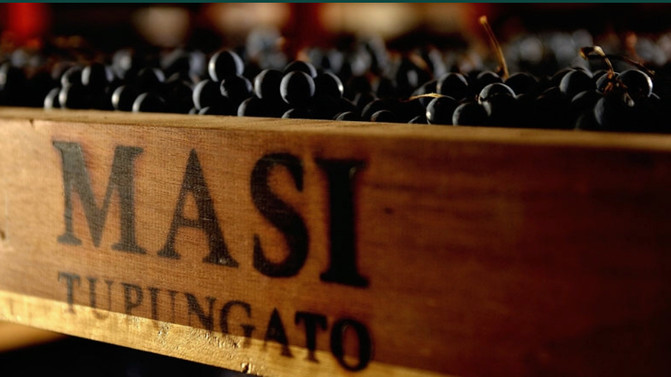 Farm-To-Table with MASI Wines