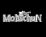Moltschun Logo 2.png
