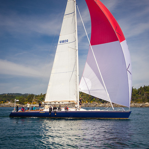 Rage, 70' Racing Sailboat  Designed by Tom Wylie