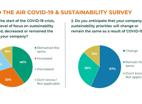 'What impact will the COVID-19 crisis have on sustainability' report for 'From Vision to Action'
