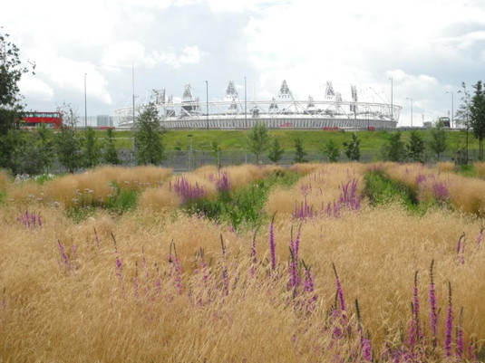 wetlands-03 stadium.JPG