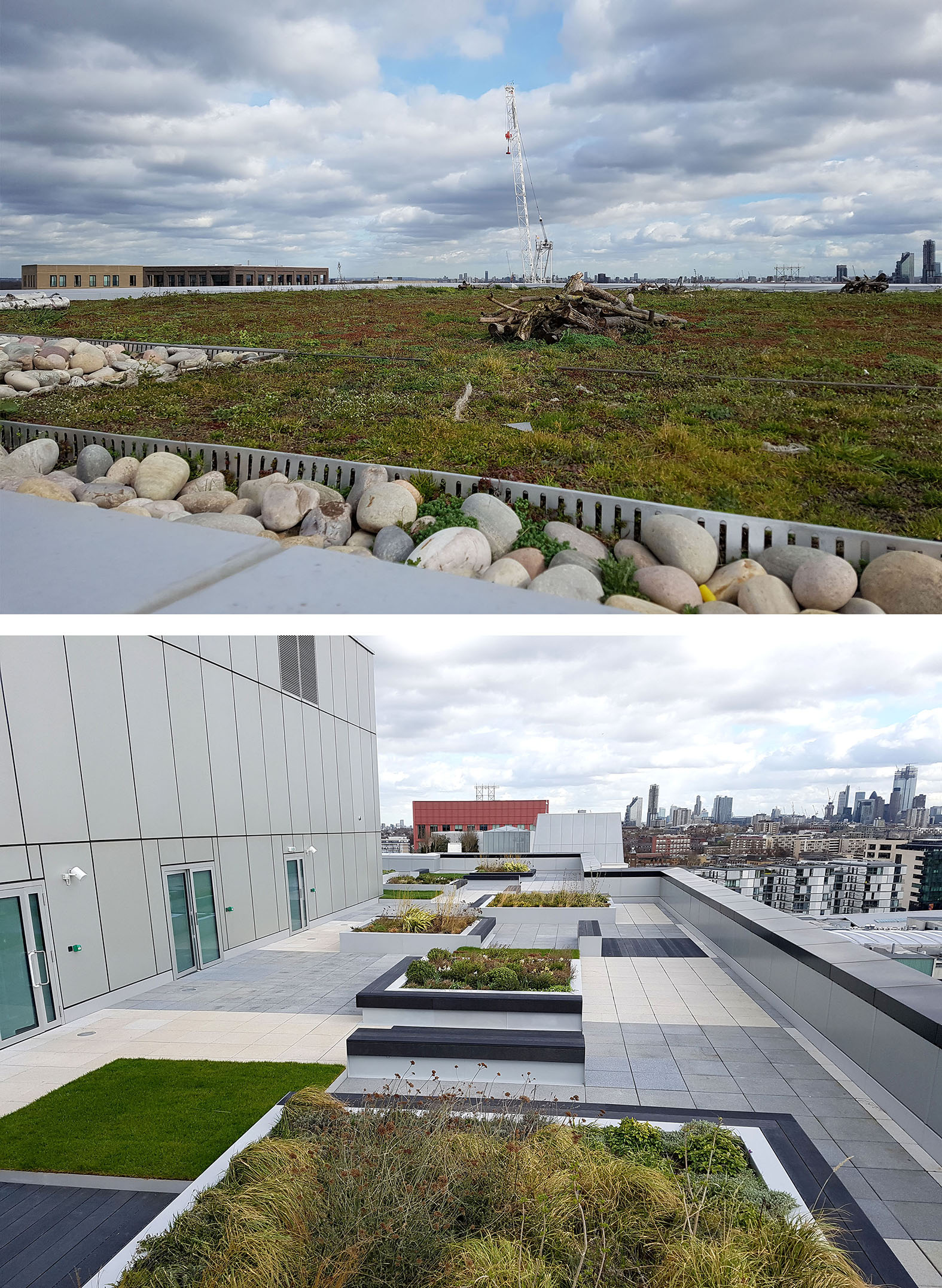 S1 Roof / Roof Terrace