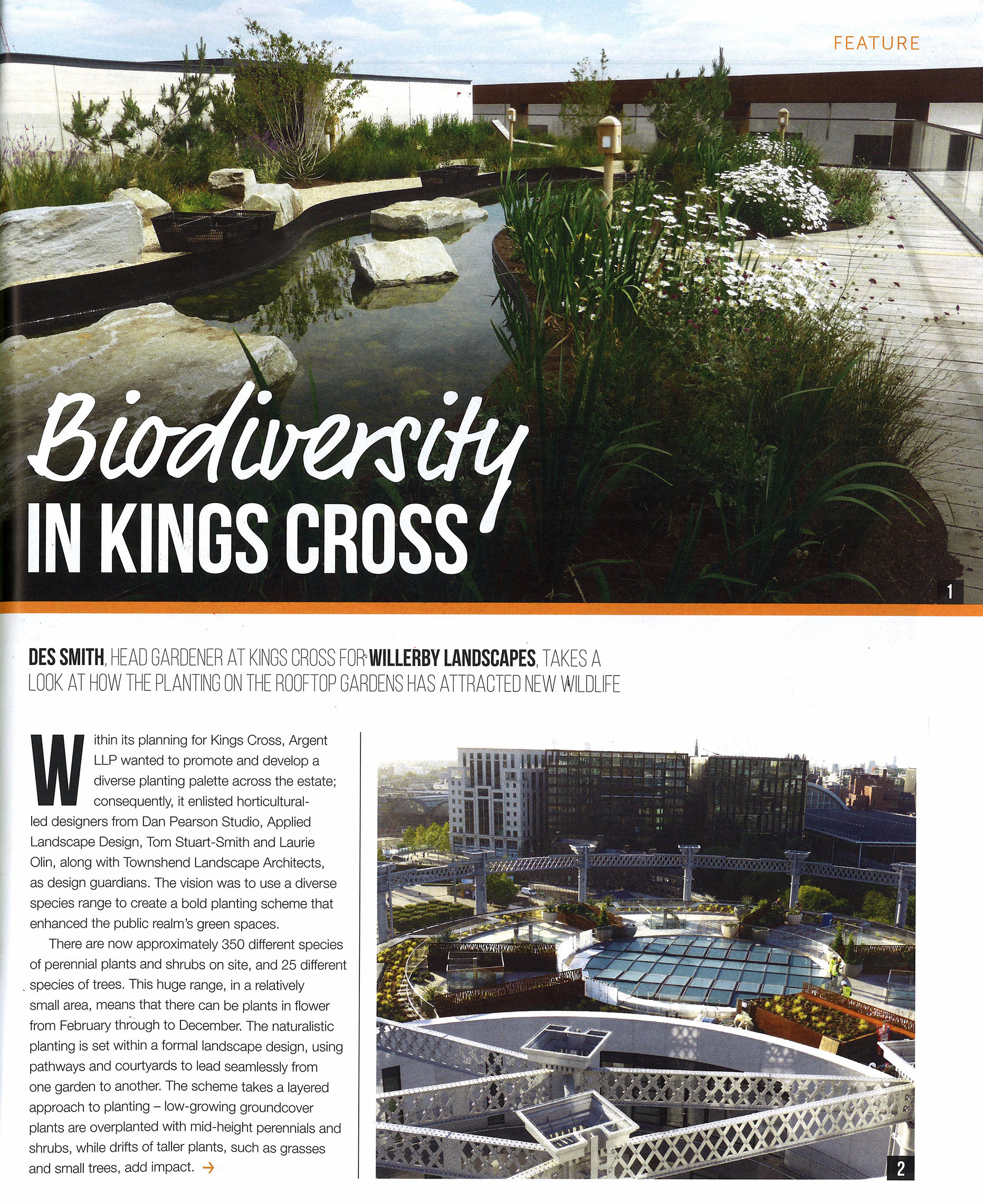 Biodiversity at Kings Cross