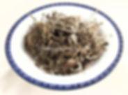 9GB01_北紫草 (萎陵菜)_02WM.jpg