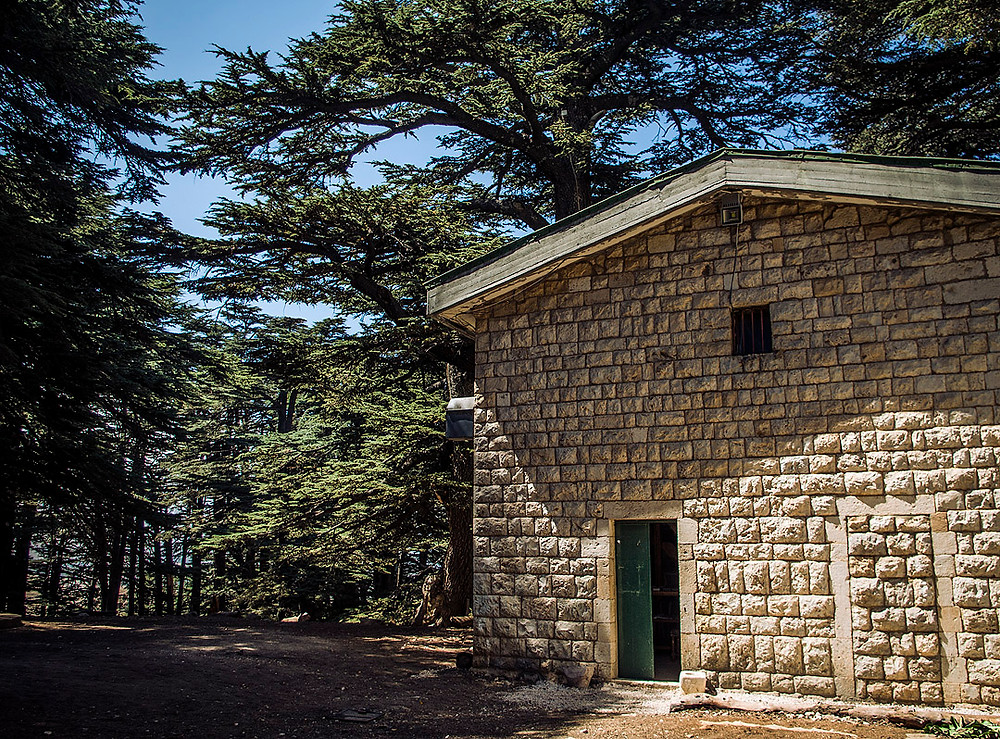 Church of God, Cedars Forest, Lebanon