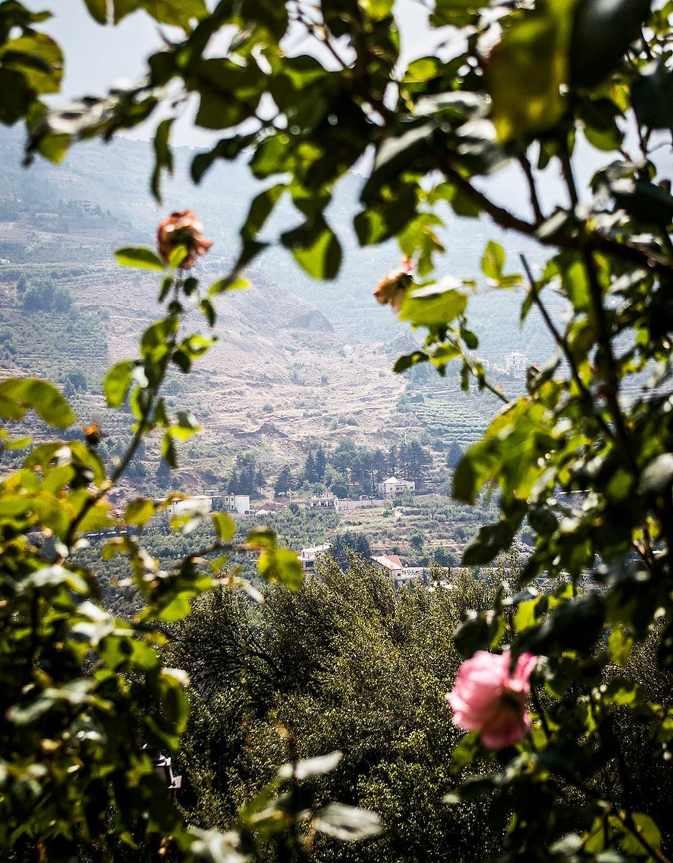 View from Gibran Museum, Bsharri, Lebanon
