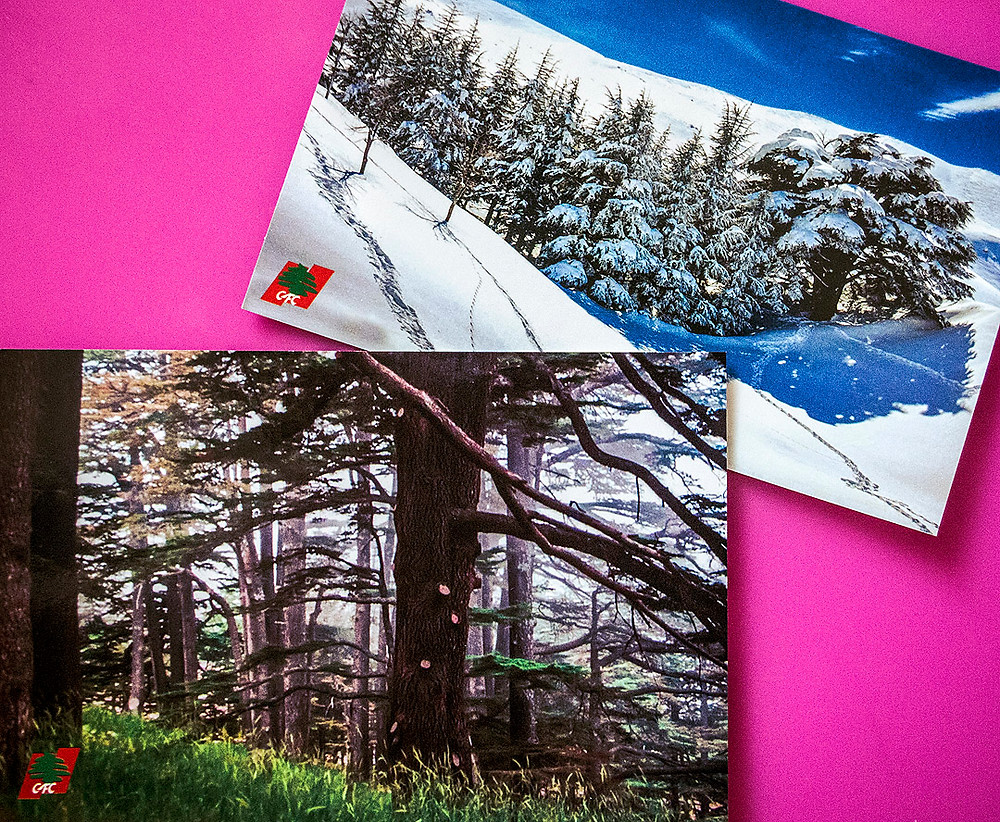 Cedars of God postcards