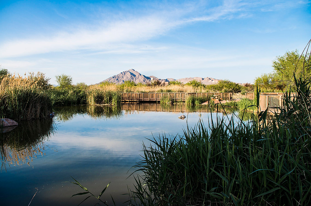 Clark County Wetlands Park, Nevada
