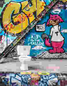 Toilet in Graffiti Alley Toronto 2018