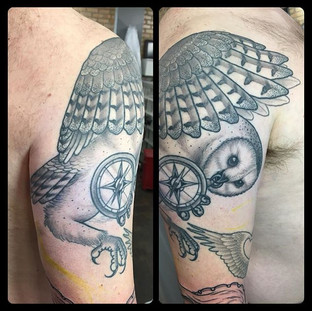 Got a healed photo of this owl.jpg