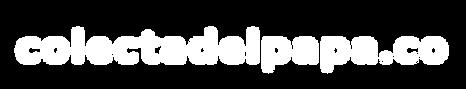 Direccion web-09.png