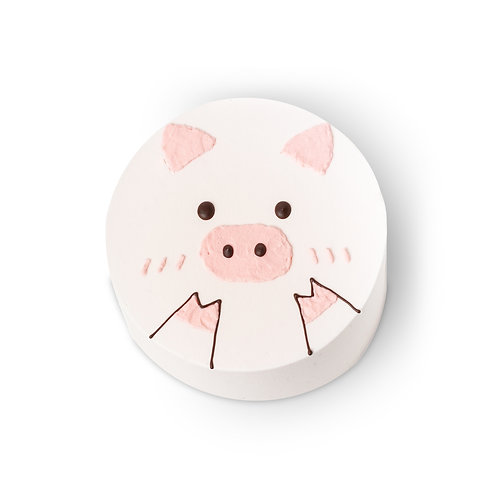 Korean Styled Piggy Drawing Cake