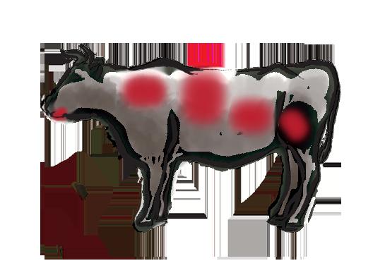 Beef Illustration_Black.png