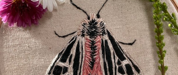Embroidery Kit - Parthenice Tiger Moth