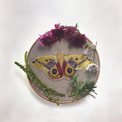 "Original Embroidery in 6"" Hoop - Automeris Moth"