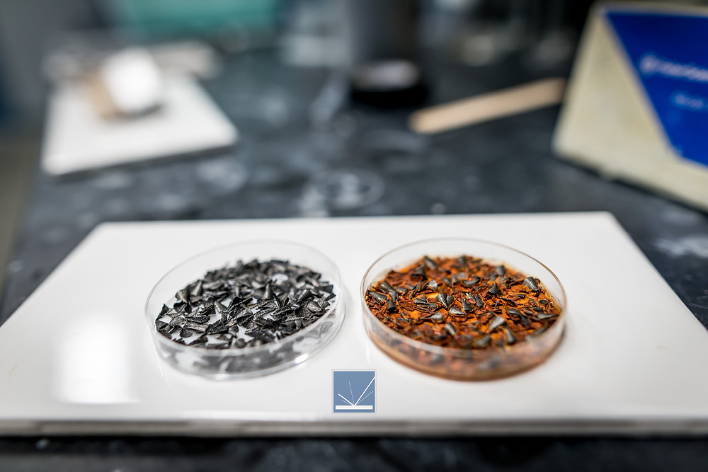 Iron chip testing is used to determine the viability of corrosion preventatives