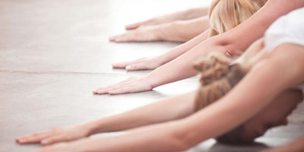 Yogakurse 2021 wenn erlaubt ....