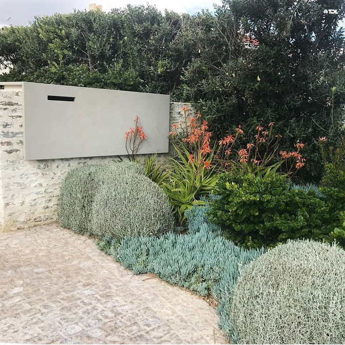 Coping with a COASTAL GARDEN