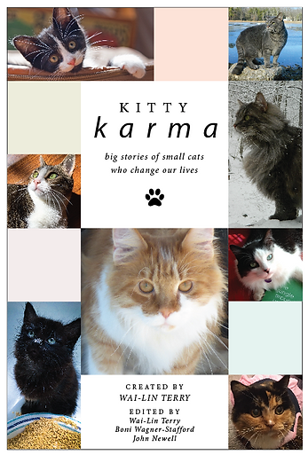 Kitty Karma Books