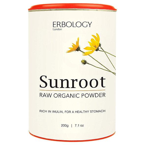 Erbology Raw Organic Jerusalem Artichoke Powder