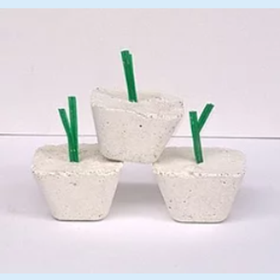 Diatom blocks - 2 sizes