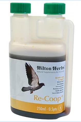 Recoup - 1 litre