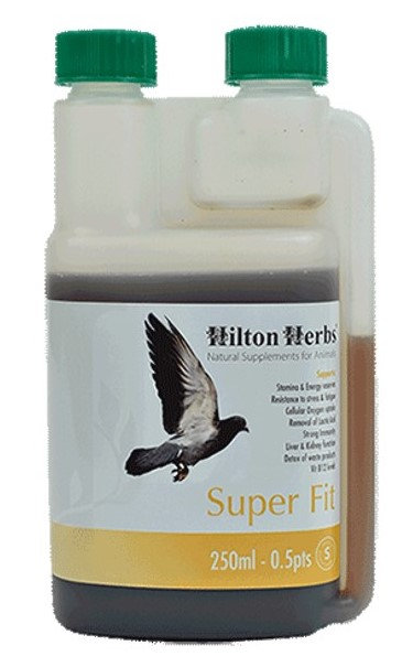 Hilton Herbs - Super Fit