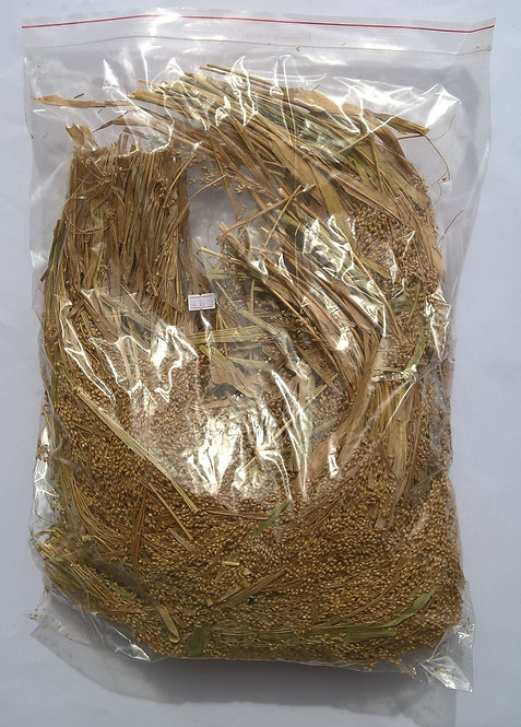 French White Millet Sprays (Aust Grown)