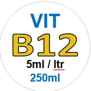 Vit B12 - 250ml