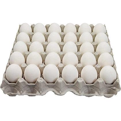White Large Egg (30)