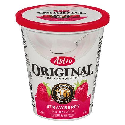 Astro Fruit Yogurt 6%