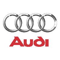 Audi .png