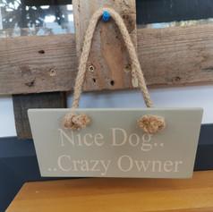 crazy owner sign £7