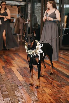 anna wedding flower girl.jpg