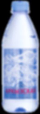 Архызская 0,5 - копия.png