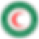Iraqi-Red-Crescent-Society copy.png