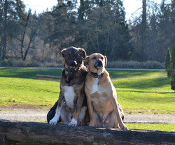 Turk [left] and Oakley [right]