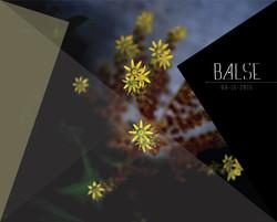 BALSE Project