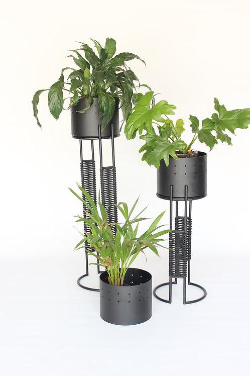 Oromo Planters