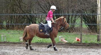 horseball enfant