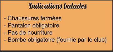 balades recommandations.jpg