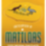 Matildas-low-res.png