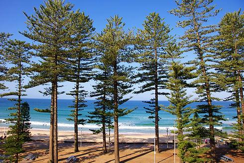 Manly Beach in Sydney Australia.jpg