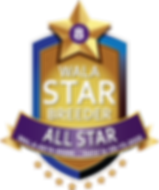 Big Rock All Star Logo.png